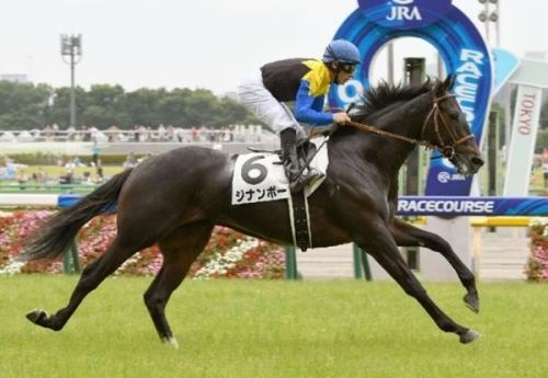【競馬】もしこの先ジナンボーがめちゃくちゃ強くて三冠とかとっちゃったらなんか嫌じゃない?