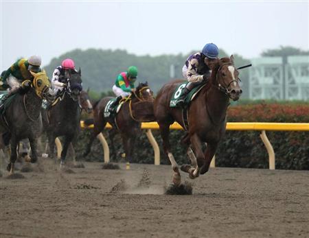 【競馬ネタ】戸崎が勝つ重賞「〇〇〇〇ンS(GIII)」説