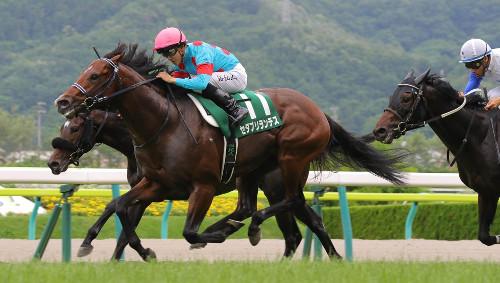 【ラジオNIKKEI賞】川田サトノクロニクルのハンデに激怒「重賞も勝ってないのにあまりにも重い。考えてほしい」