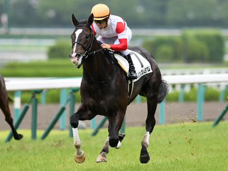 【競馬】新馬戦始まって1ヶ月、目に止まった馬は?