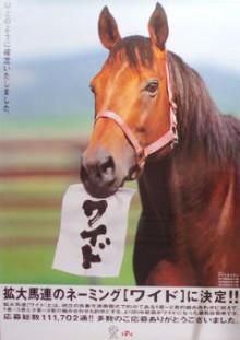 【競馬ネタ】「ないない、ナイスネイチャ」みたいなやつを最近の馬で作ってくれないか