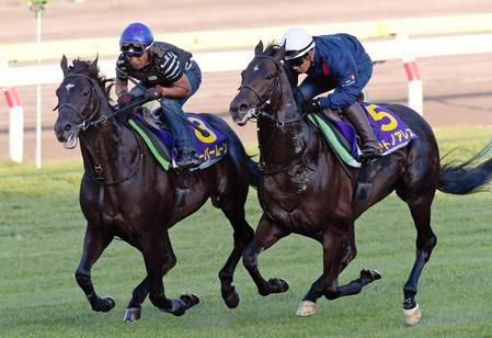 【競馬ネタ】日本競馬史上最高ジョッキーのルメール騎手、今日も函館空き巣で絶好調!!