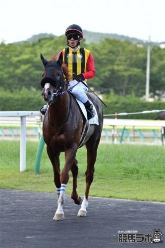 【競馬ネタ】戸崎「海外でもどこでも乗ってみたい。凱旋門賞も乗りたい!」