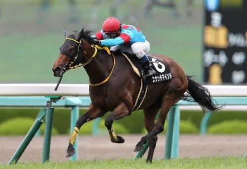 【競馬ネタ】使える脚が一瞬の馬って見てて楽しくない?