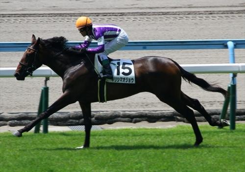【競馬ネタ】九州産馬が弱い理由がよくわからない