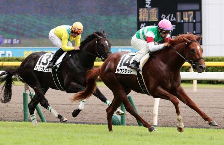 【競馬】タニノフランケル仕上がったら相当強くなりそうでワロタ
