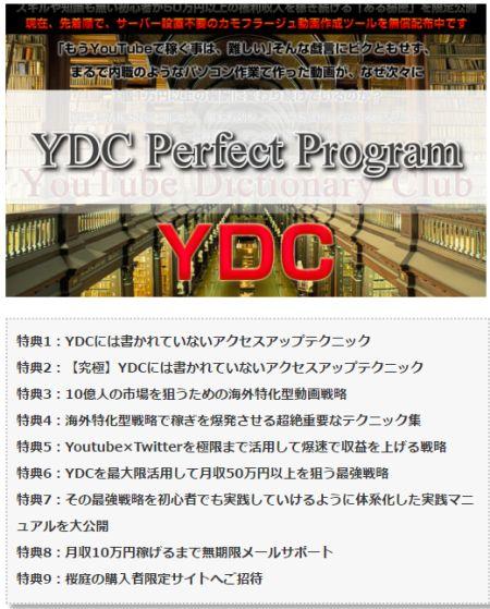 桜庭 YDC 特典