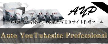 松田敏夫 AYP 収益動画サイト構築システム レビュー 特典