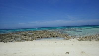 久米島 (83)