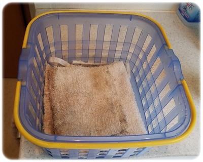かごに入れた雑巾