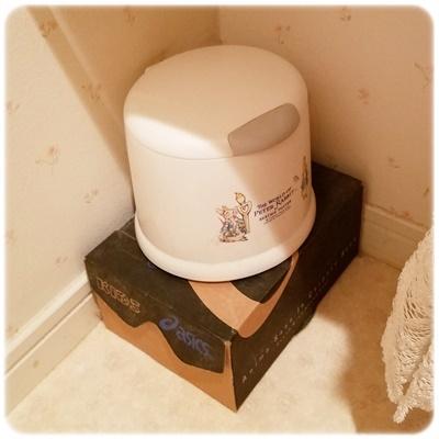 トイレのゴミ箱と段ボール