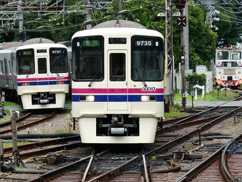 P1100358.jpg