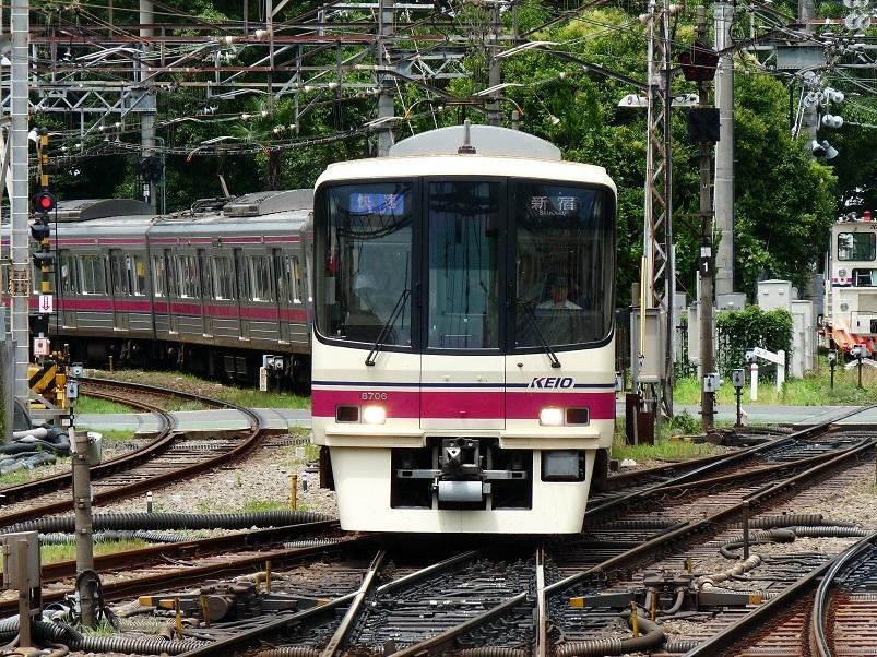 P1100362.jpg
