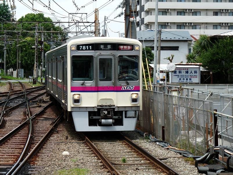 P1100368.jpg