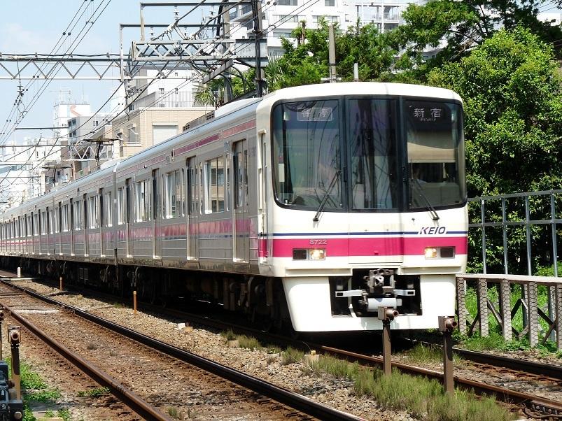 P1100485.jpg