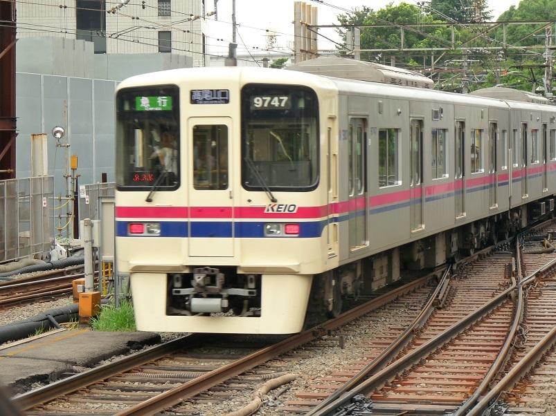 P1100537.jpg
