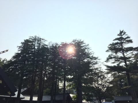 IMG_6254zd.jpg