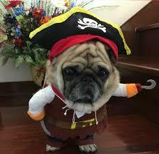 海賊ふぁんじい