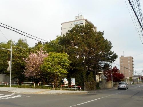 篠路3条 Aさん宅 庭 2015年