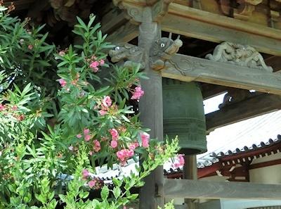 夾竹桃と鐘楼