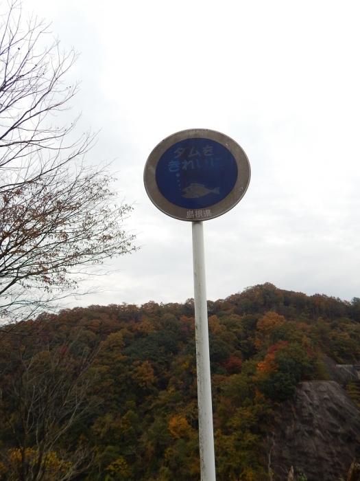 DSCN3825山佐ダム