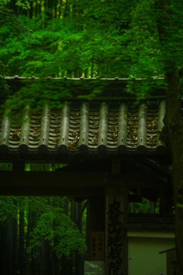 jizoin syoka 04