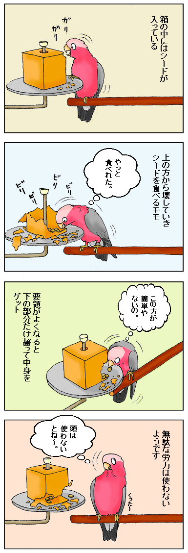 要領のいい鳥