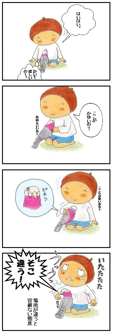 遠慮なしの鳥