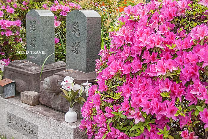 神泉苑 亀塚 鯉塚