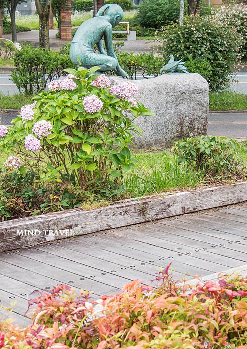 観音山公園付近 紫陽花