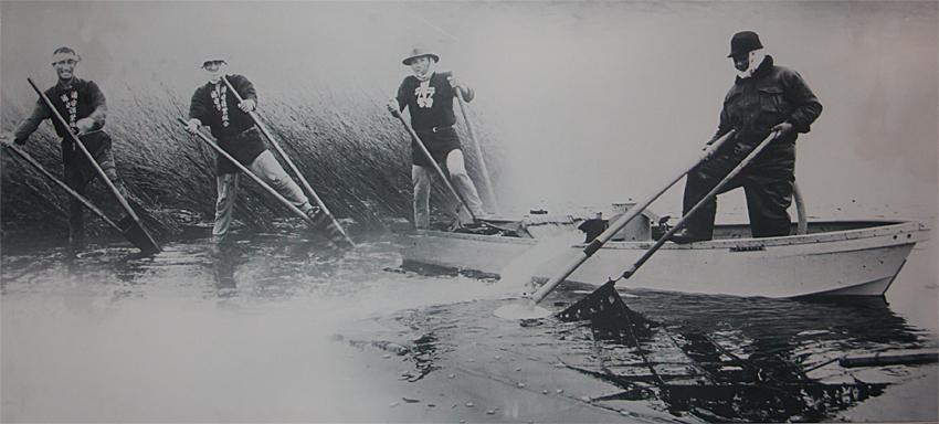 浦安市郷土博物館 海苔ペット マタボウ
