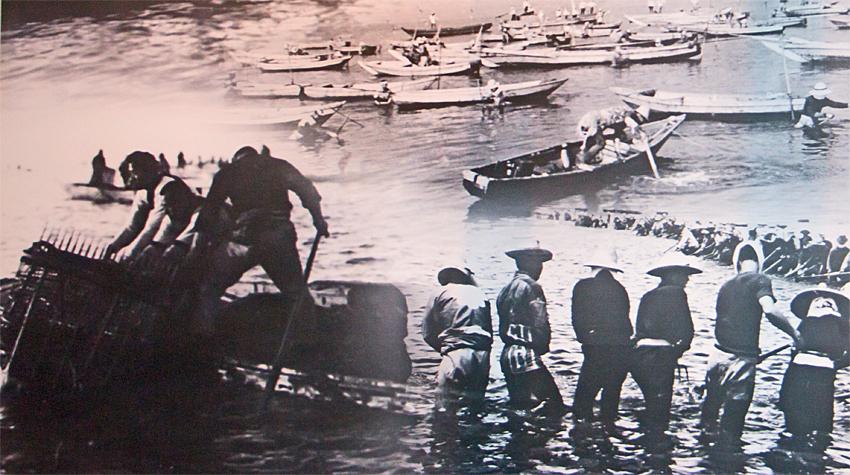 浦安市郷土博物館 漁業のようす