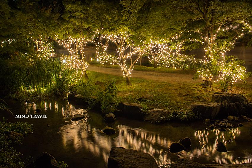 梅小路公園 輝きの庭