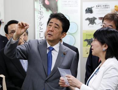20170625安倍首相が理研多細胞研を視察