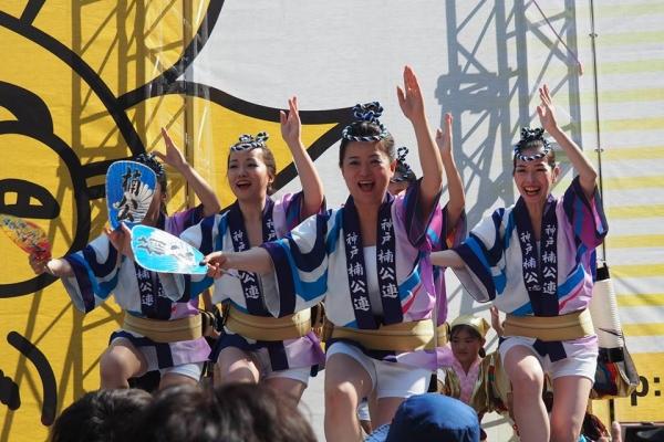 神戸楠公連 2017神戸まつり阿波踊り