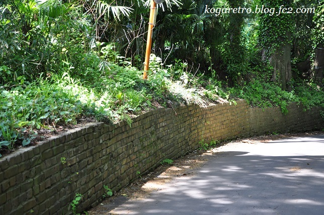 野木のレンガ道5