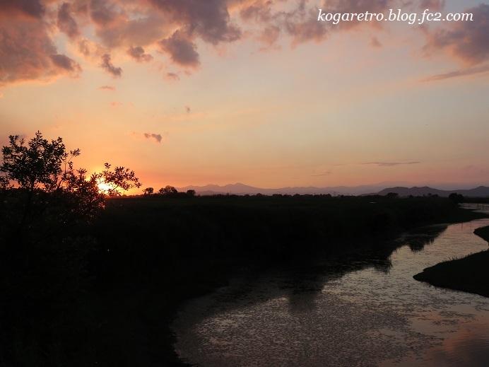 渡良瀬遊水地の夕日(14)