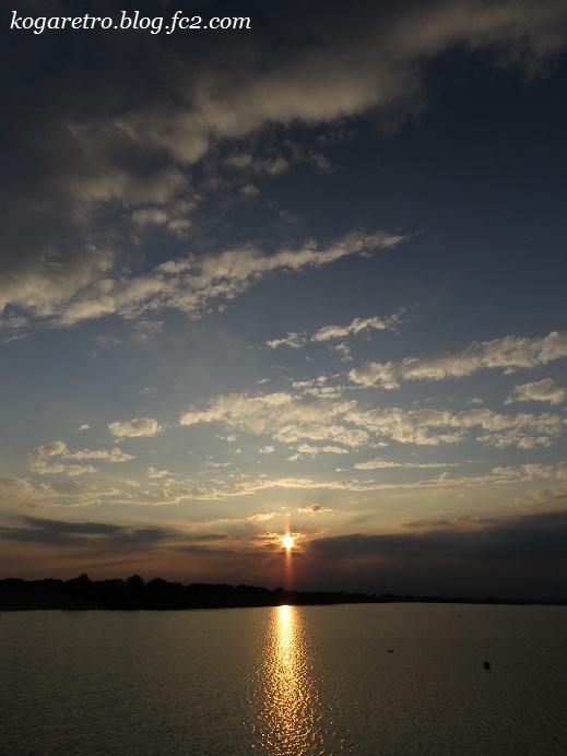 渡良瀬遊水地の夕日(15)