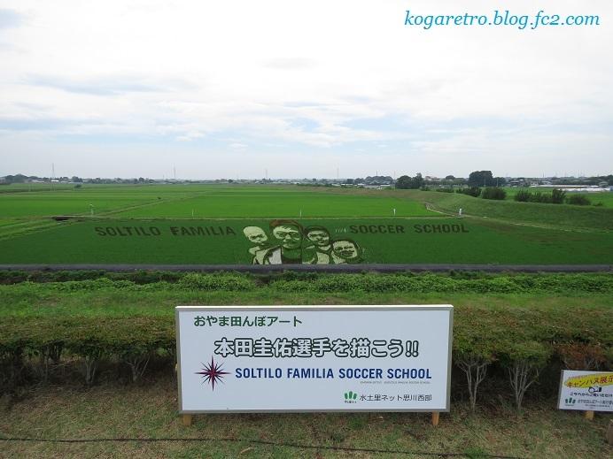 2017小山の田んぼアート見学会