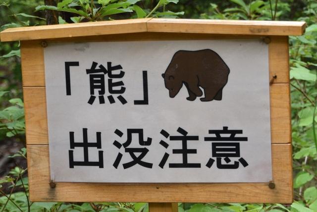 B20170729F_赤沢_熊_0038