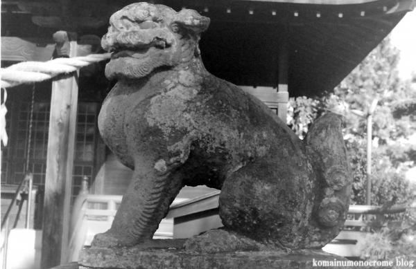 藤塚香取神社(春日部市藤塚)1