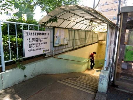 玉川上水緑道07