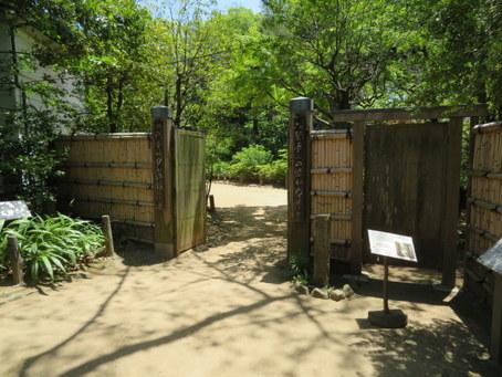 哲学堂公園21