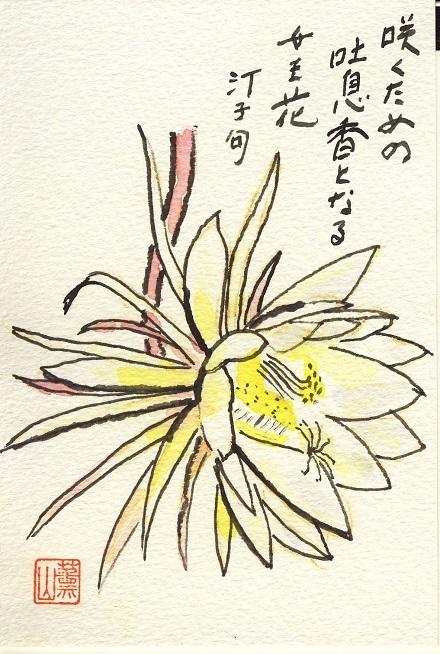 62月下美人絵手紙3