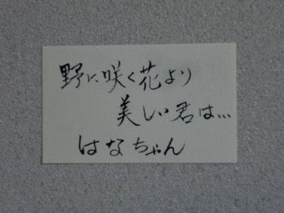 IMG_3410.jpg