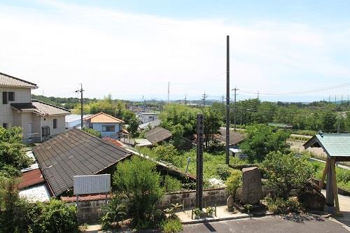 s-amidagane (4)