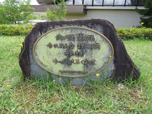 h-nakayama (15)