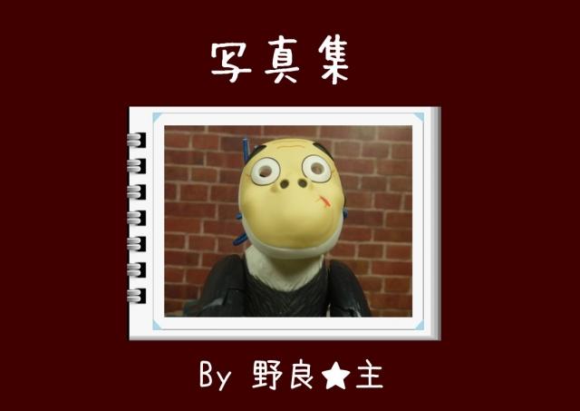 写真集・表紙5