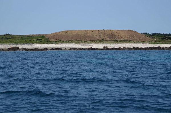 馬毛島―11