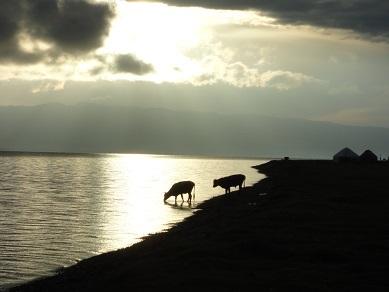 ソンクル湖の朝